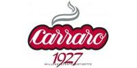 Компания Carraro